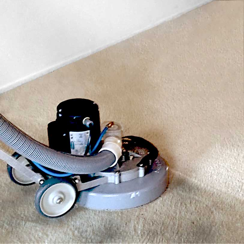 home carpet cleaning grand junction